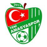 Yeni Amasya Spor Kulübü