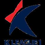 Liga K