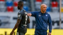 El TSG Hoffenheim prescinde de su entrenador