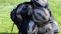 La Liga de Austria se reanudará el 2 de junio