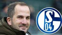 El Schalke 04 tiene nuevo entrenador