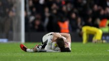 El Fulham asciende a la Premier League