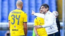 La sorprendente armonía que sostiene al Hellas Verona