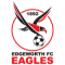 Edgeworth Eagles