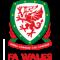 Gales U19