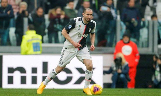 Juventus | Chiellini se deshace en elogios hacia Higuaín